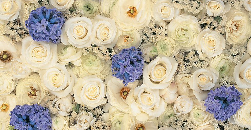 florists hero