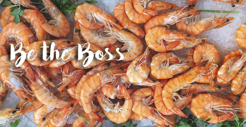 seafood-hero
