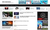 established profitable blog business - 1