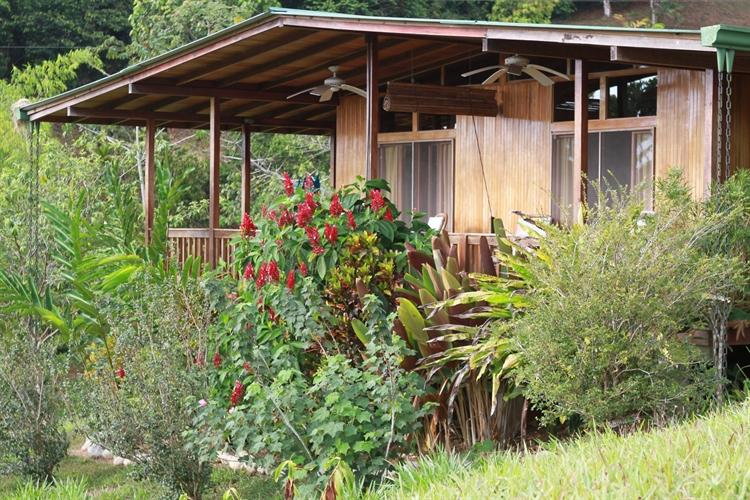 tropical nature retreat lodge - 6