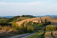 farm with vineyard montalcino - 3