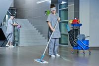 cleaning garden service - 1