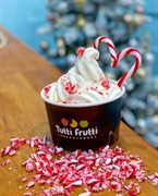 tutti frutti frozen yogurt - 3
