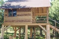 trees houses park suceava - 2