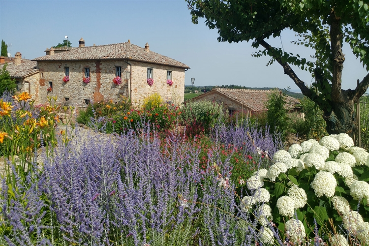 accommodation business tuscany for - 6