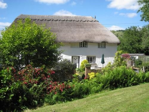 superb guest house sidmouth - 4