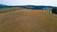 tuscan estate of 700 - 3