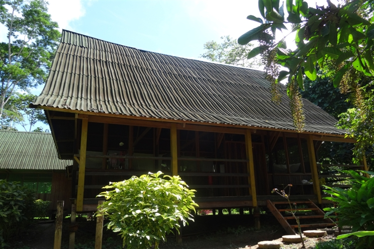ecolodge 117 acres rainforest - 4