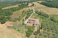 farm asciano for sale - 3
