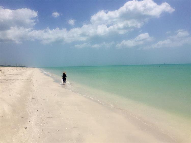 authorized beachfront hotel project - 10