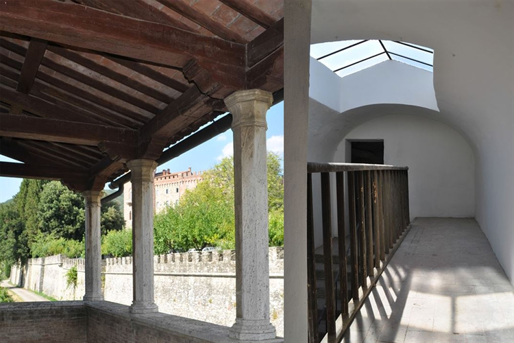 estate with 200 hectares - 7