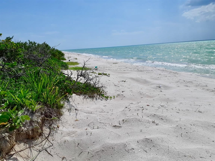 authorized beachfront hotel project - 11