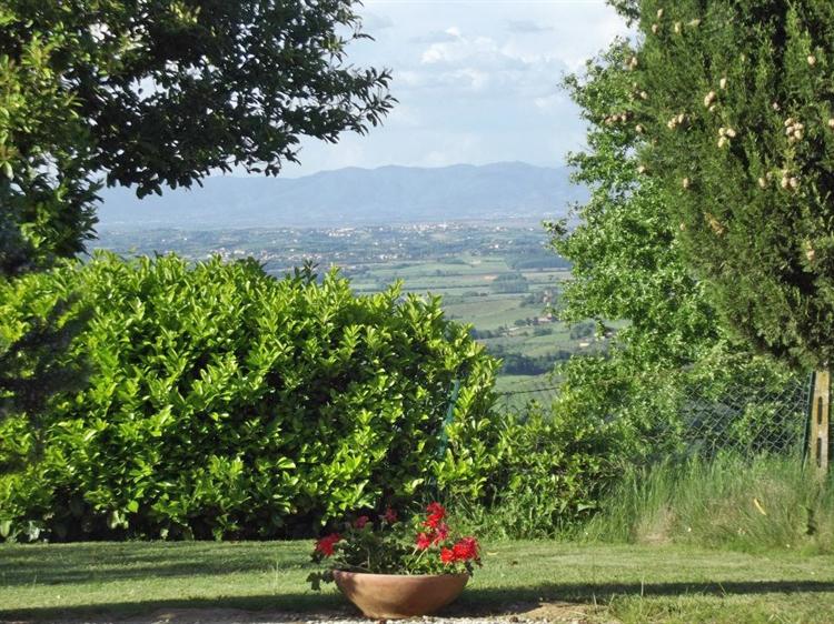 tuscan fram with vineyard - 5
