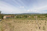 winery tuscany for sale - 2