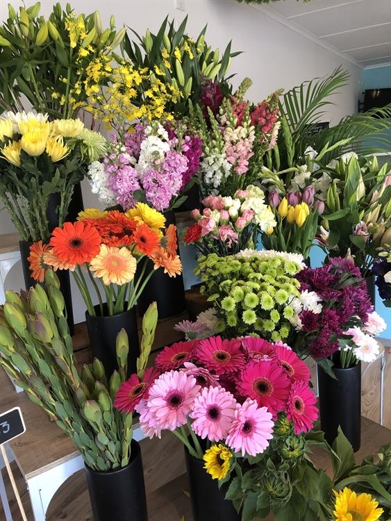 busy florist business somerville - 4