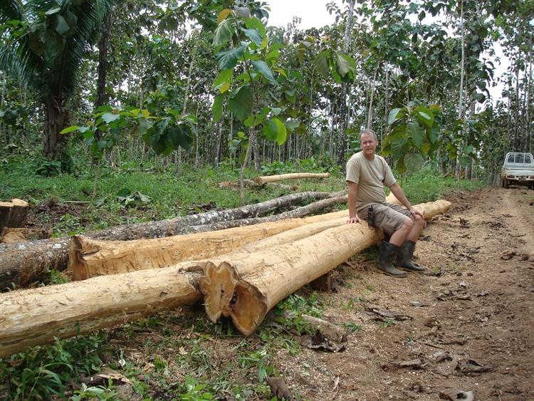 teak cacao farm - 16