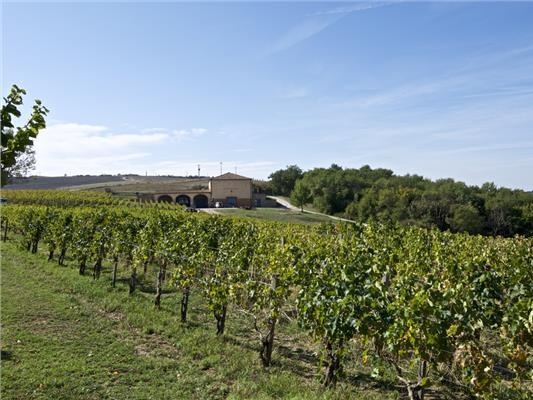 winery montalcino for sale - 15