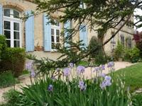 château guest house toulouse - 1