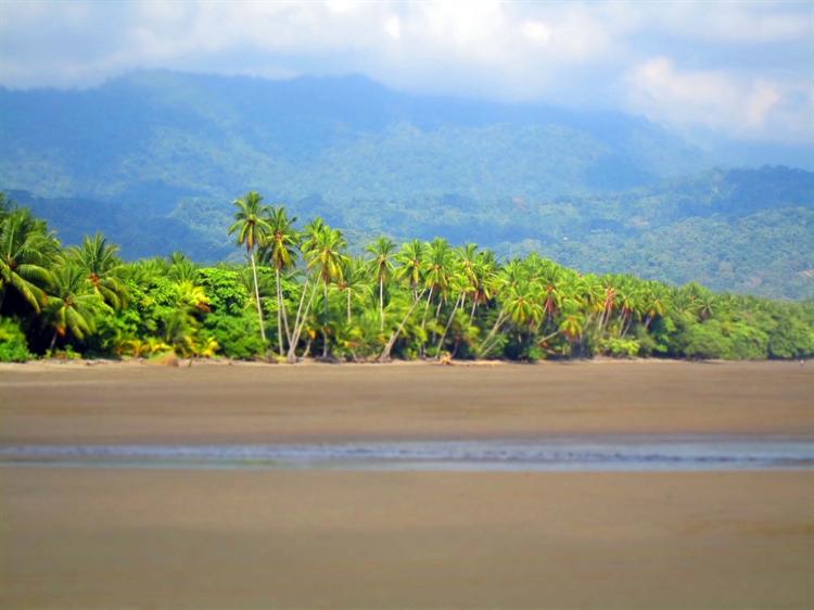 tropical nature retreat lodge - 12