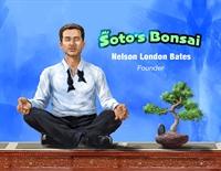 pleasure to run bonsai - 1