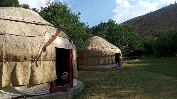 yurt camping site jizzakh - 8