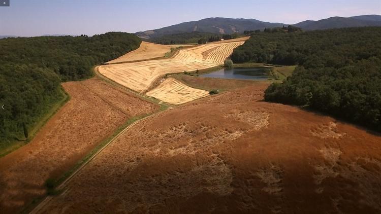 tuscan estate of 700 - 8