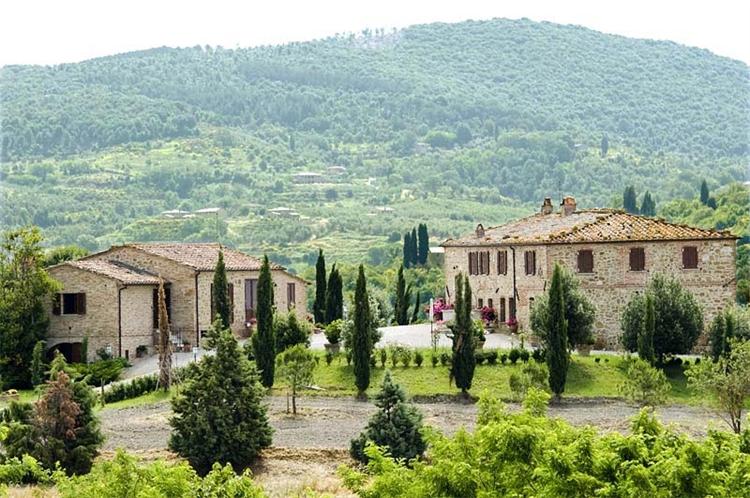 estate farm montalcino for - 4