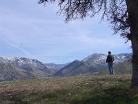 outdoor hospitality retreat california - 3