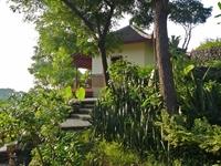 lush green bungalow resort - 1