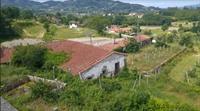 five hectare orchard farm - 1
