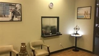 established clinic harris county - 3
