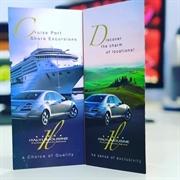 successful limousine company sorrento - 1