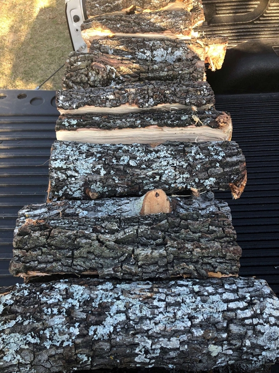 profitable firewood distribution business - 8