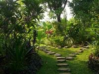 lush green bungalow resort - 3