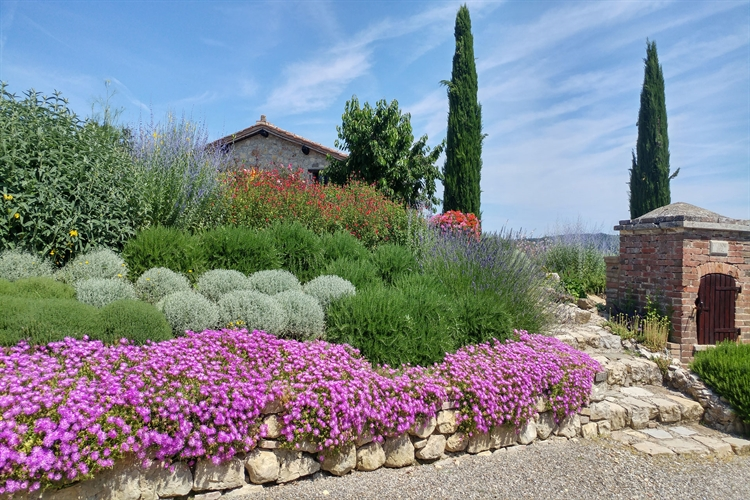 accommodation business tuscany for - 8