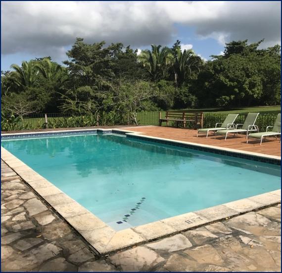 belize tropical jungle resort - 15