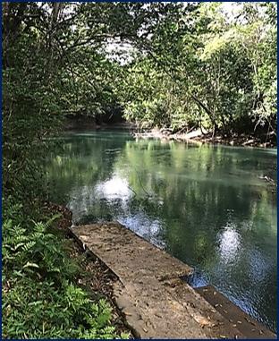 belize tropical jungle resort - 13