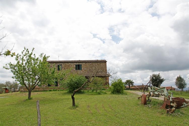 farm asciano for sale - 6
