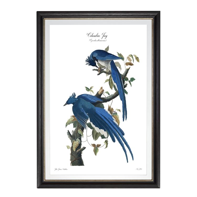 art prints ecommerce website - 4