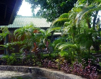 Buy A Villa Complex Bali Freehold Price Reduced
