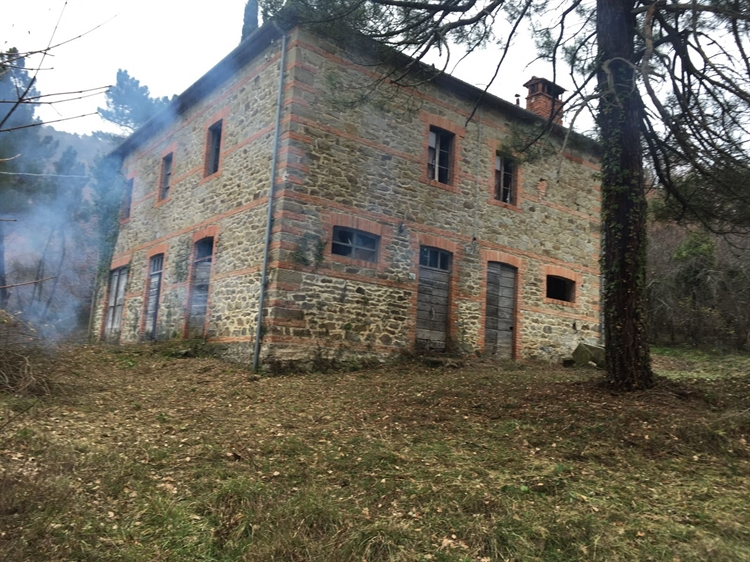 estate with 200 hectares - 5
