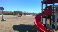 city rv park montgomery - 3