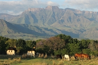 guest farm drakensberg with - 1