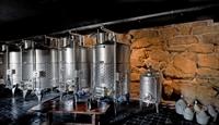 winery tuscany - 1