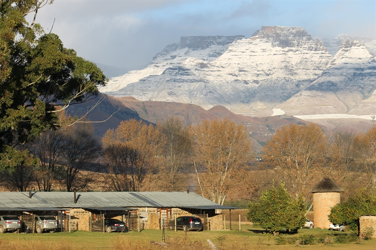 guest farm drakensberg with - 15