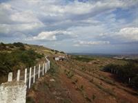 farm land property vetren - 1