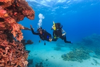 scuba diving school underwater - 1
