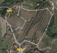 five hectare orchard farm - 2