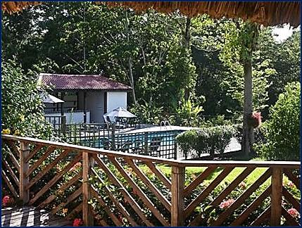 belize tropical jungle resort - 12
