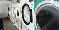 laundry factory business with - 1